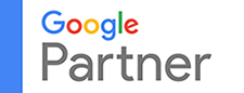Google Partner Webfox Marketing Website desginers and SEO